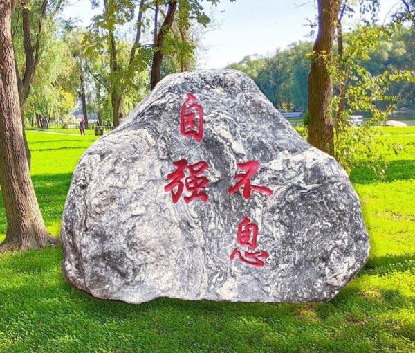 校园草坪景观石(泰山石)